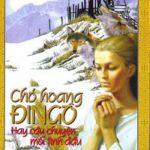 Chó Hoang Dingo